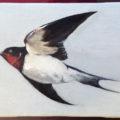 「玄鳥至(つばめきたる)/Swallows Arrive」(ご売約済み)