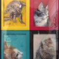 「4 CATS」松江比佐子