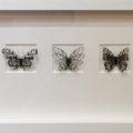 「切り絵 蝶々」