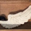 カラス貝と白鳥/澤畑直実