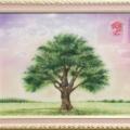 Tree of Life/佐山雅美