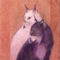 「神話のカケラ」/葵